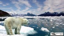 Antarktika Alarm Veriyor… Kayıp 3 Trilyon Ton!
