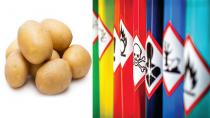 Suriye'den İthal Edilen Patateste 'Kimyasal' Şüphesi!