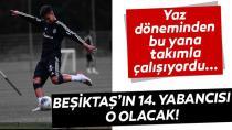 Beşiktaş Tercihini Ajdin Hasic'den Yana Kullandı!